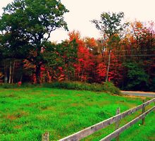 New England Autumn air. by ShellyKay