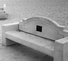Benches at Dog Beach by James2001