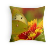 colourful day Throw Pillow