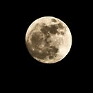 Moon by Penny Rinker