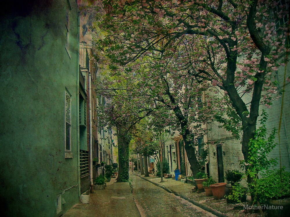 Through the Alley - Philadelphia by MotherNature