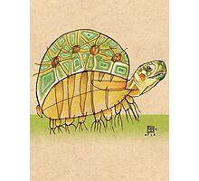 Speedy Turtle Photographic Print
