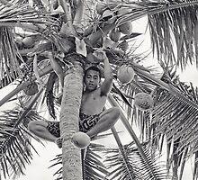 Tree Climbing by Josie Eldred