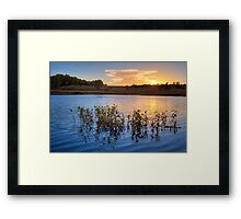 Sunset Gathering Framed Print