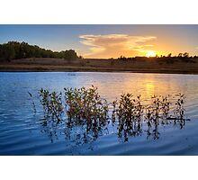Sunset Gathering Photographic Print