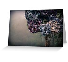 Hydrangea in the Fall Greeting Card