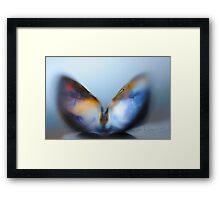 Majestic Butterfly Framed Print