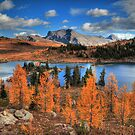 Autumn in high altitude (HDR) by zumi