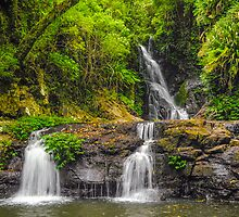 Triple Falls by Karen Willshaw