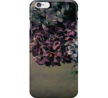 Hydrangea in the Fall iPhone Case/Skin