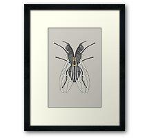 Unzipped Fly Framed Print