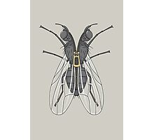 Unzipped Fly Photographic Print