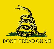 Gadsden Flag Dont Tread On Me by allhistory