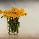 Buttercups by Karen Havenaar