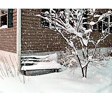 Bench Covered In Snow Photographic Print