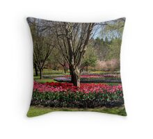 Beauty Surrounds Throw Pillow