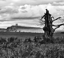 Tower Kenmuir Hill, Lochwinnoch by KieranHamilton