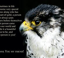 Peregrine Falcon Thank You Friend Greeting Card by Moonlake