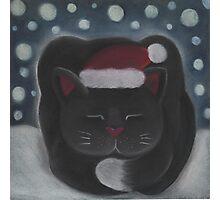 Trevor the Cat Photographic Print
