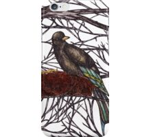 Swallow Nest iPhone Case/Skin