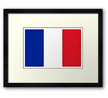 France Flag Framed Print