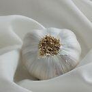Garlic by Patrick Reinquin