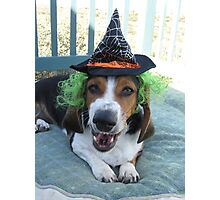 Scary Witch Lunabelle Photographic Print