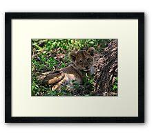 """""""little charming"""" Framed Print"""