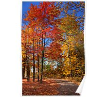 Beautiful Autumn Day Poster