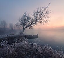 Early morning, a tree and a boat on the lake by Stanislav Salamanov