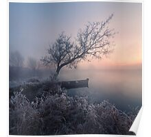 Early morning, a tree and a boat on the lake Poster