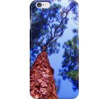 Ever Skyward iPhone Case/Skin