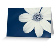 Divine Proportions  Greeting Card