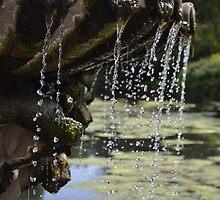 Italian Fountain by janlou