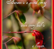 """""""Autumn is a second spring. . ."""" by Paula Tohline  Calhoun"""