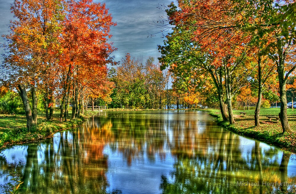 On Autumn Pond by Michael  Herrfurth