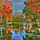 On Autumn Pond by Michael  Herrfurth