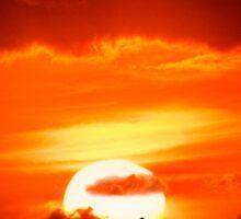 Sunset Paddler Sticker