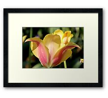 Feeling the Love Framed Print