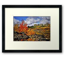 Card #443 Steens Fall Colors Framed Print