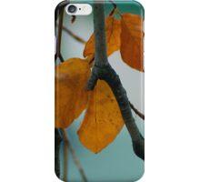 Autumn Love iPhone Case/Skin