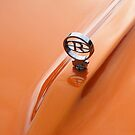 Car 1965 buick riviera badge by Russell Voigt