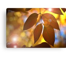 The Human Soul and Nature Canvas Print