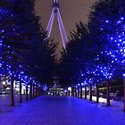 Blue trees at the London Eye by SteveHphotos