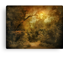 Moonlight Clearing Canvas Print