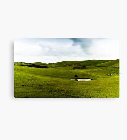 Green Green Hills Canvas Print