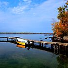 Dock Reflections by Larry Trupp