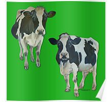 Two Cows on Green Poster