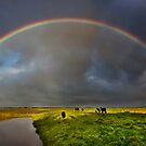 Farmland Spectrum. by Barry Feldman