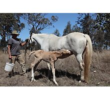 Thirsty Work, this being born Photographic Print